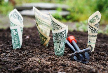 L'Impact de la culture d'entreprise sur votre rentabilité