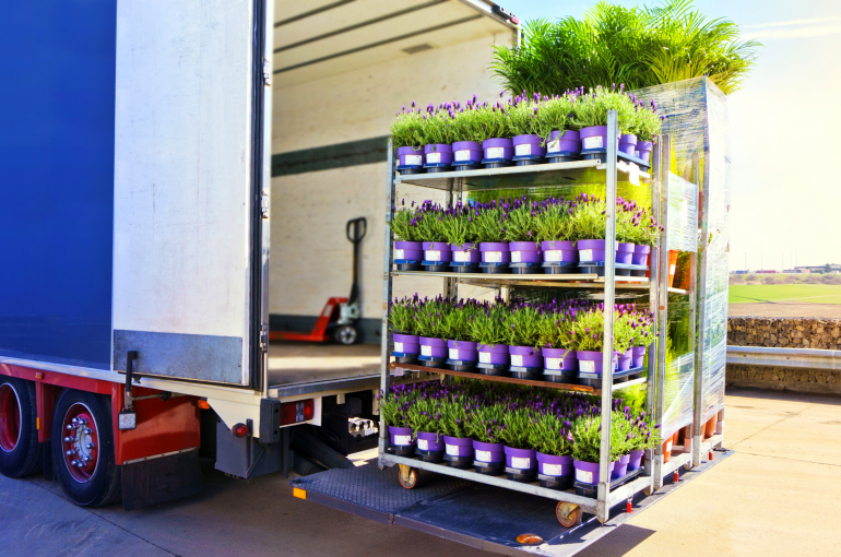 Plant Delivery or Pickup: What's More Cost Efficient?