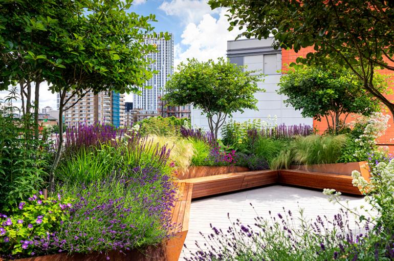 8 Award-Winning Landscaping Designs