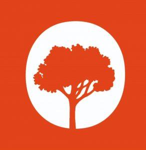 Ginkgo Tree Landscaping