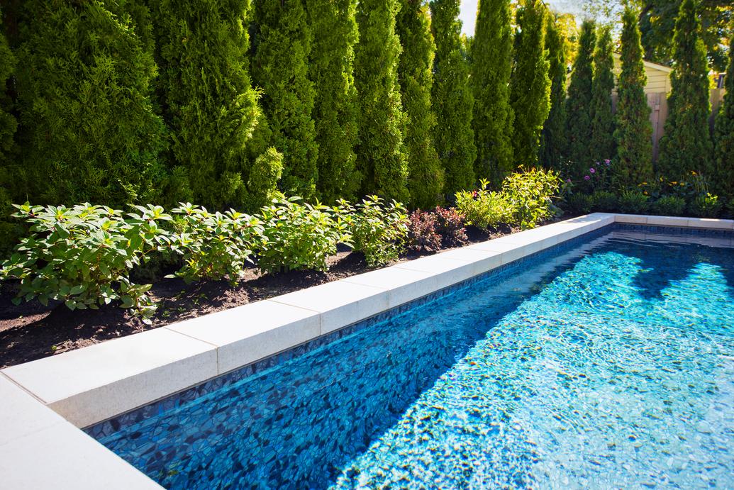 landscaping Mount Royal pool
