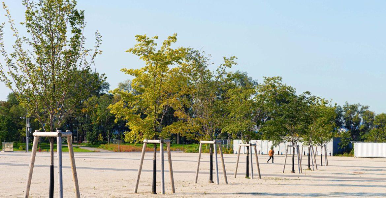 landscape jean drapeau park
