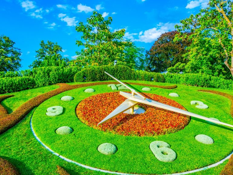 Five Time-Saving Tips for Landscaping Jobs