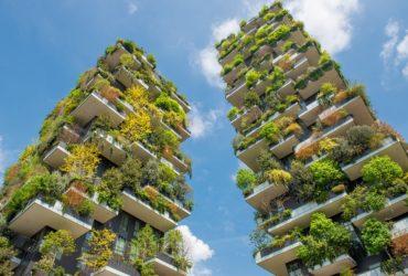 Comment assurer l'avenir de votre entreprise de paysagement?