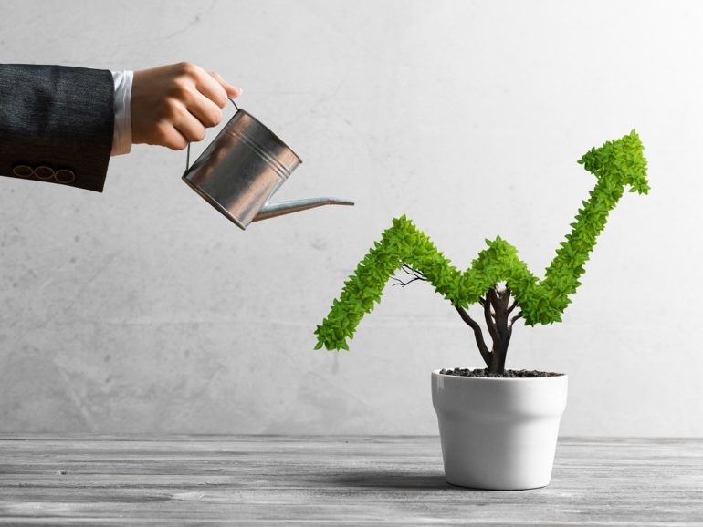 5 Tips for Landscaping Companies to Finish the Year with Profits